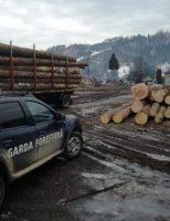 Material lemnos confiscat de polițiști