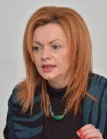"""Adomnicăi: """"S-au luat măsurile necesare pentru ca alegerile europarlamentare să se desfășoare în bună regulă"""""""