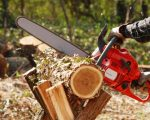 Instruirea lucrătorilor forestieri din cadrul Ocolului Silvic Moldovița