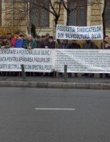 Silvicultorii au pichetat Parlamentul