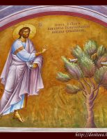 Iosif şi smochinul neroditor