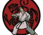 Cinci sportivi suceveni medaliați la Campionatul Mondial de Karate Shotokan