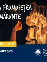 Festivalul Luminii – ediția a V-a, are loc sâmbătă, 8 iunie, în centrul Sucevei