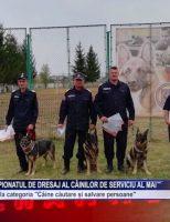 Olly, medaliat la Campionatul de Dresaj al Câinilor de Serviciu al MAI