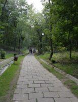 Primăria Suceava, proprietar cu acte în regulă peste Parcul Șipote și Păduricea Zamca