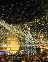 Câmpulungenii au participat la aprinderea luminițelor din bradul de Crăciun