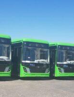 Autobuzele electrice au ajuns la Suceava