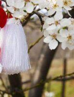 Recomandări de 1 și 8 martie pentru cetățenii Municipiului Suceava